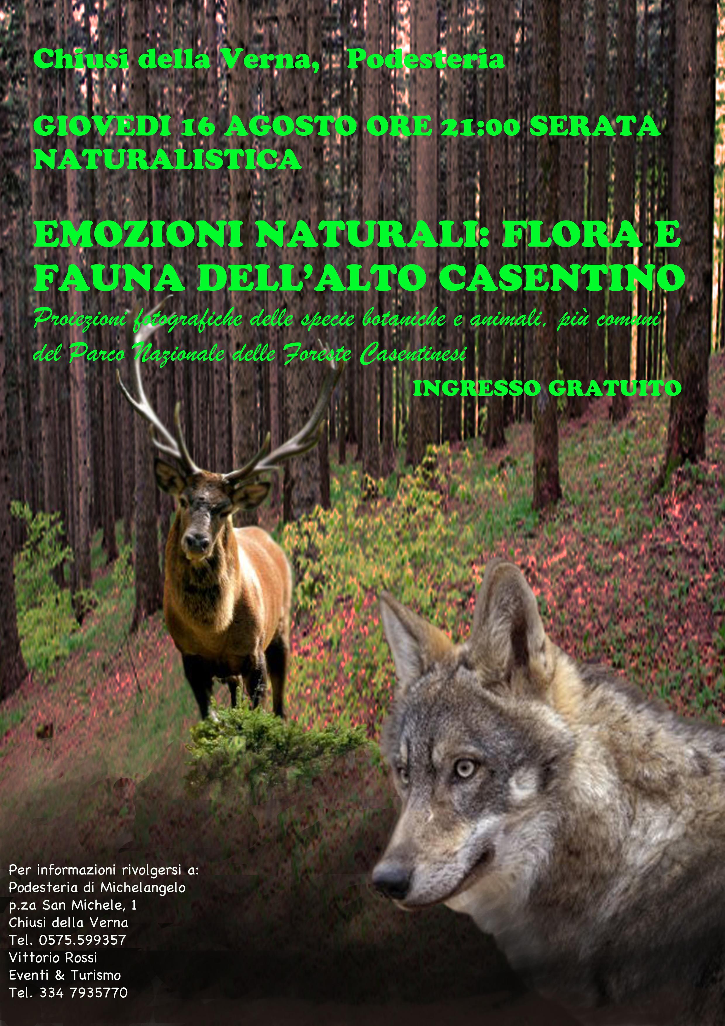 volantino serata naturalistica (2)
